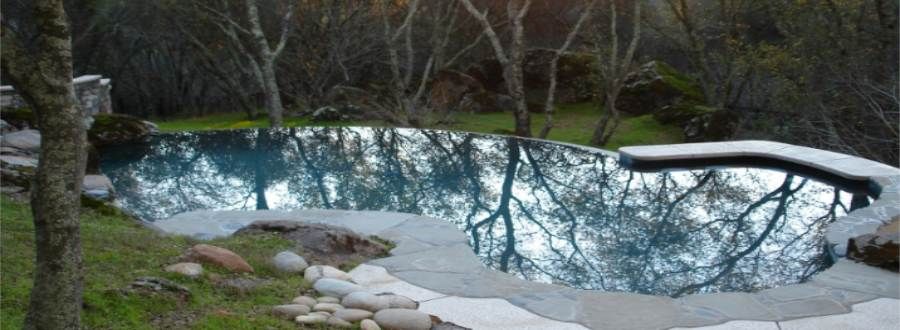 Natural Gunite Inground Swimming Pool